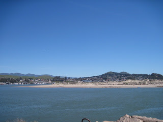 Our Trip to Cambria