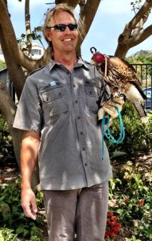 Terranea Resort Falconry Program