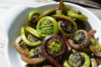 Fresh Fiddlehead Ferns
